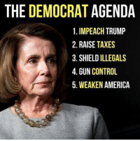 America, Memes, and Taxes: THE DEMOCRAT AGENDA  1. IMPEACH TRUMP  2. RAISE TAXES  3. SHIELD ILLEGALS  4. GUN CONTROL  5. WEAKEN AMERICA Sums it up brilliantly!