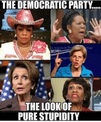 Memes, Party, and Democratic Party: THE DEMOCRATIC PARTY  THE LOOK OF  PURE STUPIDITY