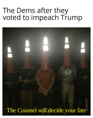 Rose's are red, Owls screech, WTF is Trump in a peach: The Dems after they  voted to impeach Trump  MTVW  fate  The Counsel will decide  your Rose's are red, Owls screech, WTF is Trump in a peach