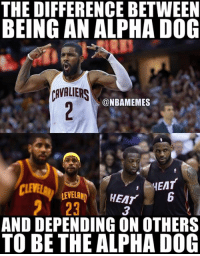 Nba, Heat, and Lebron: THE DIFFERENCE BETWEEN  BEING AN ALPHA D0G  CAVLERS  @NBAMEMES  HEAT  LEVELAN HEATb  23  3  AND DEPENDING ON OTHERS  TO BE THE ALPHA DOG Kyrie vs Lebron.