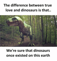 🤔: The difference between true  love and dinosaurs is that..  We're sure that dinosaurs  once existed on this earth 🤔