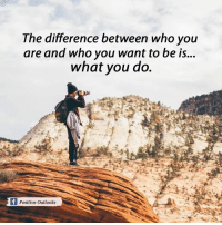 Memes, Outlook, and What You Doing: The difference between who you  are and who you want to be is...  what you do.  lf Positive Outlooks