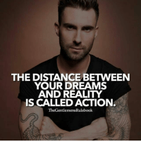 Memes, Dreams, and Reality: THE DISTANCE BETWEEN  YOUR DREAMS  AND REALITY  IS CALLED ACTION  TheGentlemensRulebook Everything you have ever wanted is at your fingertips. It's all up to you to make it happen. Stop procrastinating and get started right now! LIKE & COMMENT IF YOU AGREE!