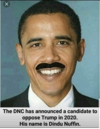 🤣: The DNC has announced a candidate to  oppose Trump in 2020.  His name is Dindu Nuffin. 🤣