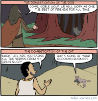 Friends, Work, and Best: THE DOMESTICATION OF THE DOG  COME, NOBLE WOLF. WE WILL WORK AS ONE,  THE BEST OF FRIENDS FOR AししTIME  THE DOMESTICATION OF THE CAT  WHOA! HEY, ARE YOU EATING  ALL THE VERMIN FROM MY  GRAIN SILOP  THATS NONE OF YOUR  GODDAMN BUSINESS  Smbc-comics.com