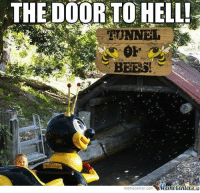 Not the bees! Not the bees!: THE DOOR TO HELL!  REUNNER  BEES!  memecenter-com  Manetenler Not the bees! Not the bees!