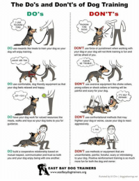 Comfortable, Memes, and Respect: The Do's and Don't's of Dog Training  DO'S  DON'T's  1 LIKE  TRAINING  ME  TRAININE  TIME  DO use rewards like treats to train your dog so yorDON'T use force or punishment when working with  :  :  dog will enjoy training  your dog or your dog will not think training is fun and  will be afraid of you.  WALK5 ARE FUN  PLEASE  NO TROUBLE  DO use comfortable, dog friendly equipment so that  your dog feels relaxed and happy  DON'T use aversive equipment like choke collars.  prong collars or shock collars or training will be  : painful and scary for your dog.  ITS SELF  DEFENSE  5iT TOY  DO have your dog work for valued resources likeDON'T use confrontational methods that may  meals, walks and toys so your dog looks to you for frighten your dog or worse, cause your dog to react  TRY  DO build a cooperative relationship based on  mutual respect, communication and trust so both  you and your dog enjoy being with one another  DON'T use methods or equipment  uncomfortable, painful, forceful, scary or intimidating  to your dog. Positive reinforcement training is so much  more fun for both the dog and owner  EAST BAY DOG TRAINERS  www.eastbaydogtrainers.org  lustroted by Uli Chin | doggiedrowings.net When training your dog, it's an awesome feeling when you know they want to do something because it pleases you.