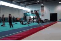 Never, Super, and The Double: The Double Backflip To A Flying Reverse Tuck   15 Super Athletic Feats That May Never Be Topped