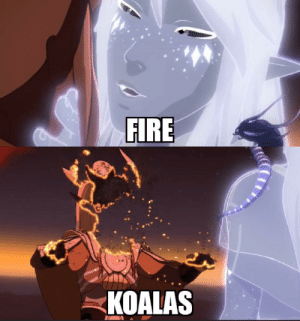The Dragon Prince S Commentary On Australian Fires Reddit Meme