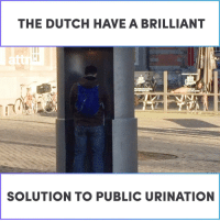 Memes, Brilliant, and Dutch Language: THE DUTCH HAVEA BRILLIANT  SOLUTION TO PUBLIC URINATION The Dutch have a brilliant solution to public urination.