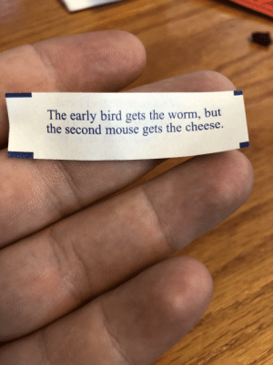 But the second mouse: The early bird gets the worm, but  the second mouse gets the cheese. But the second mouse