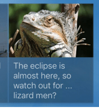 Watch Out, Eclipse, and Watch: The eclipse is  almost here, so  watch out for  lizard men?