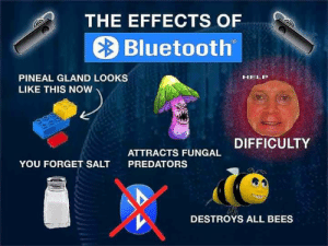 pineal gland: THE EFFECTS OF  Bluetooth  PINEAL GLAND LOOKS  LIKE THIS NOW  HELP  PREDACT FUNGAL DIFFICULTY  YOU FORGET SALT  PREDATORS  DESTROYS ALL BEES