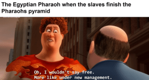 Free, Dank Memes, and Egyptian: The Egyptian Pharaoh when the slaves finish the  Pharaohs pyramid  acuon aITU SOme language  Oh, I wouldn' tosay free.  More like under new management. I'm using some advanced vocabulary here