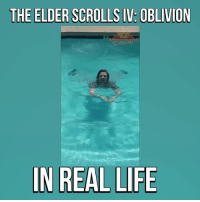This is too accurate 😂😂😂 (via: LaFave Bros on Youtube): THE ELDER SCROLLS IV: OBLIVION  N REAL LIFE This is too accurate 😂😂😂 (via: LaFave Bros on Youtube)