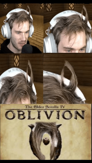 There are no accidents: The Elder Scrolls IV  OBLIVION There are no accidents