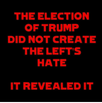 Didly: THE ELECTION  OF TRUMP  DID NOT CREATE  THE LEFT'S  HATE  IT REVEALED IT