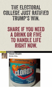 College, Memes, and Pumpkin: THE ELECTORAL  COLLEGE JUST RATIFIED  TRUMP'S WIN  SHARE IF YOU NEED  A DRINK OR FIVE  TO HANDLE LIFE  RIGHT NOW.  OCCUPY  DEMOCRATS  Hasan Shaikh  Drink this.  CONCENTRATED  strofused as before  pumpkin (GC)