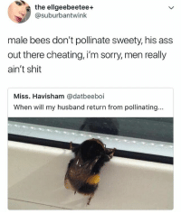 TBH.: the ellgeebeetee+  @suburbantwink  male bees don't pollinate sweety, his ass  out there cheating, i'm sorry, men really  ain't shit  Miss. Havisham @datbeeboi  When will my husband return from pollinating... TBH.
