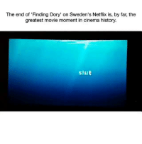 Netflix, Finding Dory, and History: The end of 'Finding Dory' on Sweden's Netflix is, by far, the  greatest movie moment in cinema history.  siut Tag one