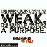 Repost @noble_omerta with @repostapp Be all that you have the potential to be. And when you are aware of the that potential exceed it 👣👍🏾: THE ENEMY IS NOT FIGHTING  YOU BECAUSE YOU ARE  WEAK.  THE ENEMY FIGHTING  YOU BECAUSE YOU HAVE  AA PURPOSE.  UNASHAMED  IMPACT  ti  noble omerta Repost @noble_omerta with @repostapp Be all that you have the potential to be. And when you are aware of the that potential exceed it 👣👍🏾