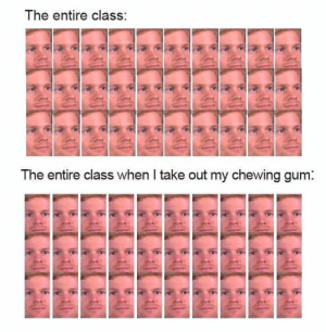 Hilarious Memes: The entire class:  The entire class when I take out my chewing gum: Hilarious Memes