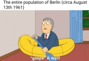 This wouldnt be the first time an entire country collectively bitched about a wall.: The entire population of Berlin (circa August  13th 1961])  gasps A wall! This wouldnt be the first time an entire country collectively bitched about a wall.