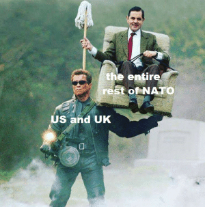 Memes for a very special lady #13: the entire  rest of NATO  US and UK Memes for a very special lady #13