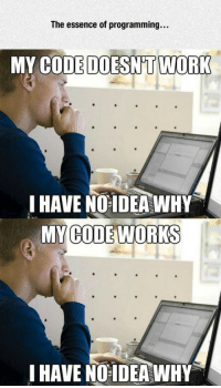 <p>Programming In A Nutshell.</p>: The essence of programming...  MY CODE DOESNT WOR  I HAVE NOIDEA WHY  MY CODE WORKS  I HAVE NO IDEA WHY <p>Programming In A Nutshell.</p>