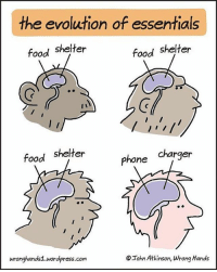 Bad, Crazy, and Dank: the evolution of essentials  food shelter  food shelter  Phone  charger  food shelter  wronghands1 wordpress.com  OIohn Atkinson, wrong Hands Lmao 👊🏻TAG your HOMIES👊🏻 - Credit: Like for good luck ignore for bad luck - 👌🏼check out my youtube - in bio - My backup- @memes_are_mee.2 - Support appreciated😉 👌🏼 Tags 🚫 IGNORE 🚫 420 memesdaily Relatable dank Memes HoodJokes Hilarious Comedy HoodHumor ZeroChill Jokes Funny KanyeWest KimKardashian litasf KylieJenner JustinBieber Squad Crazy Omg Accurate Kardashians Epic bieber Weed TagSomeone memesaremee trump rap drake