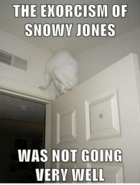 Memes, 🤖, and Exorcism: THE EXORCISM OF  SNOWY JONES  WAS NOT GOING  VERY WELL