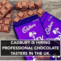 Memes, 🤖, and Cadbury: @The FA  CADBURY IS HIRING  PROFESSIONAL CHOCOLATE  TASTERS IN THE UK. Tag someone who should sign up...
