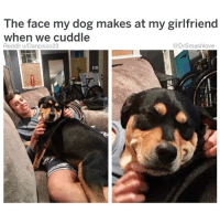"Bless Up, Drake, and Empire: The face my dog makes at my girlfriend  when we cuddle  Reddit u/Dancisco23  @DrSmashlove THIS SMUG, SELF-SATISFIED, SH!T-EATING GRIN IS THE LOOK GIRLS MAKE AT OTHER GIRLS WHEN THEY LANDED THE MODERATELY ATTRACTIVE TRASH FVCKBOY WITH REASONABLY ABOVE-AVERAGE DIH THAT ALL THE LADIES WITH ANY MODICUM OF GOOD SENSE DISCARDED AND BLOCKED. THIS IS THE PHASE IN HER LIFE WHEN SHE POST ANCIENT, XEROXED-LOOKING DRAKE-RIHANNA MEMES WITH CAPTIONS LIKE ""when you meet your soulmate and you just KNOW ☺️"" OR ""when you just VIBE 🔥"" OR ""when he cuts off all his side pieces for you ☺️"" WITH A TAG TO HER TRASHMAN'S PAGE AND HIS PAGE ALWAYS PRIVATE AND HE WEARING SUNGLASSES LIKE HE HIDING FROM THE LAW AND HIS BIO ALWAYS SAY SUM LIKE: ""Maverick 