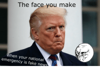 pouty: The face you make  When you  emergency is fake news  r national