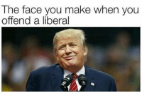 Offending Liberals is SOOOO entertaining! trumpmeme trumptrain buildthewall trumpmemes america usa trump donald maga makeamericagreatagain libturd libtard offended kek trumpwon: The face you make when you  offend a liberal Offending Liberals is SOOOO entertaining! trumpmeme trumptrain buildthewall trumpmemes america usa trump donald maga makeamericagreatagain libturd libtard offended kek trumpwon
