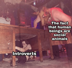 Introverts are Savage: The fact  that human  beings are  social  animals  Introverts Introverts are Savage