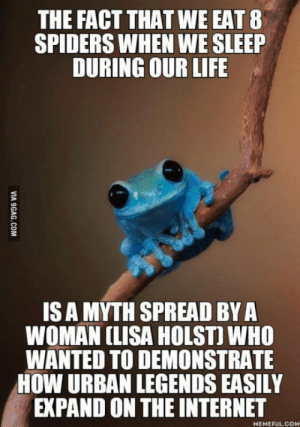 Apart from that, if its on the internet, it must be true: THE FACT THAT WE EAT 8  SPIDERS WHEN WE SLEEP  DURING OUR LIFE  IS A MYTH SPREAD BYA  WOMAN CLISA HOLST) WHO  WANTED TO DEMONSTRATE  HOW URBAN LEGENDS EASILY  EXPAND ON THE INTERNET  MEMEFUL.CO Apart from that, if its on the internet, it must be true