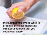 Memes, Weed, and 🤖: the fact that you smoke weed Is  probably the least interesting  info about yourself that you  could ever share