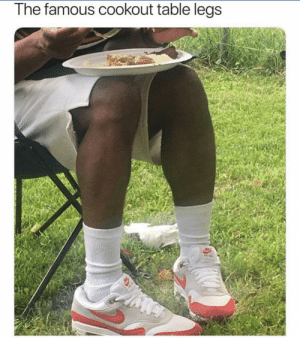 Memes, Taken, and 4th of July: The famous cookout table legs  otoufoale When all the tables are taken but you still got a plate!! Happy 4th of July chingons!!