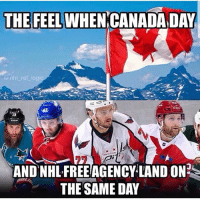 Logic, Memes, and National Hockey League (NHL): THE FEEL  WHEN CANADA DAY  @nhl ref logic  47  TON  AND NHLFREEAGENCY LAND ON  THE SAME DAY BEST SIGNING TODAY???