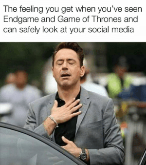 Game of Thrones, Social Media, and Game: The feeling you get when you've seen  Endgame and Game of Thrones and  can safely look at your social media https://t.co/O3yrAbgWVV