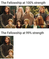 Anaconda, True, and Fellowship: The Fellowship at 100% strength  The Fellowship at 99% strength  12 True dat
