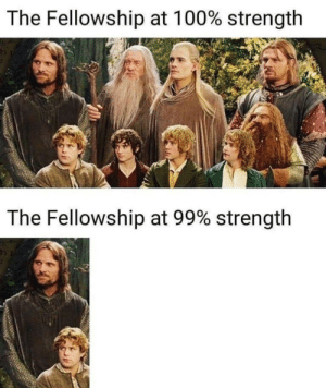 Anaconda, Dank, and Memes: The Fellowship at 100% strength  The Fellowship at 99% strength  12 True dat by GallowBoob MORE MEMES