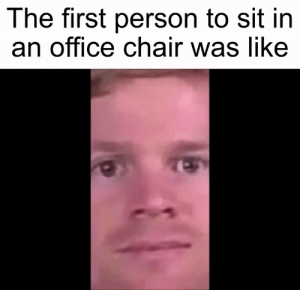 meirl: The first person to sit in  an office chair was like meirl