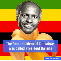 His full name was Canaan Sodindo Banana, and he served as Zimbabwe's president from 1980 to 1987.: The first president of Zimbabwe  was called President Banana  @FACTS I guff com His full name was Canaan Sodindo Banana, and he served as Zimbabwe's president from 1980 to 1987.