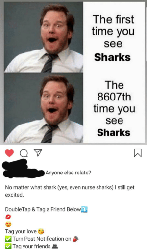 🆂🅷🅰🆁🅺🆂: The first  time you  see  Sharks  The  8607th  time you  see  Sharks  Anyone else relate?  No matter what shark (yes, even nurse sharks) I sill get  excited.  DoubleTap & Tag a Friend Below  Tag your love  Turn Post Notification on  Tag your friends 🆂🅷🅰🆁🅺🆂