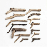 The first wooden pistols/firearms used by early hunter-gather humans (circa ~50,000-13000 BCE): The first wooden pistols/firearms used by early hunter-gather humans (circa ~50,000-13000 BCE)