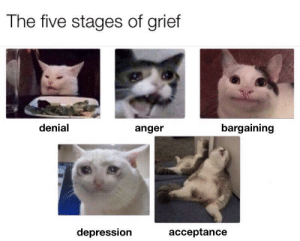 Behold, the product of my sleep deprivation: The five stages of grief  denial  bargaining  anger  depression  acceptance Behold, the product of my sleep deprivation