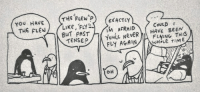 Memes, Time, and Been: THE FLEW ? EXACTLY  l,  YoU HAVE  CoULDI  BuT PAST  TENSE  IM AFRAID  You NveRHAVE BEEN  FLY AGAIN/ WH.LE TIME  FLyING THIS  OH extrafabulouscomics.com