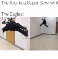 Philadelphia Eagles, Memes, and Nfl: The floor is a Super Bowl win!  The Eagles  FUNNIESTNILMEMES I had this for a while, should've posted it yesterday. I have a bunch of these memes, I'll probably put them all in 1 post tomorrow. @funniestnflmemez